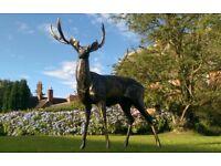 Stag Deer Garden Statue Sculpture Aluminium Life size Bronze