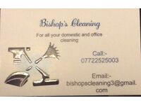 Domestic cleaner with many years experience. Can clean while you work. NVQ qualified.
