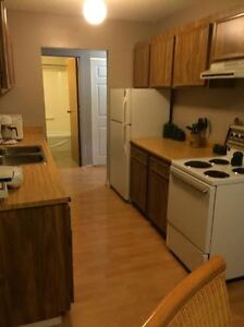 Partly Furnished Apartment for rent in Logan Lake
