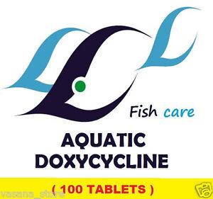 Pet Supplies > Fish & Aquariums > Aquariums & Tanks