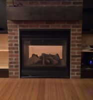 Double sided fireplace insert