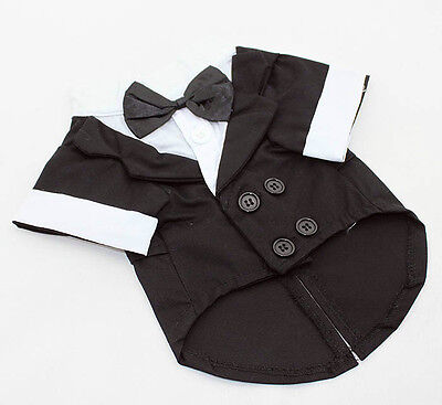 SMALL Dog tuxedo, black-tie affair, formal apparel, Black-White-Grey small (Black Tie Tuxedo Kostüme)
