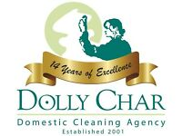 Part Time Domestic Cleaner Required