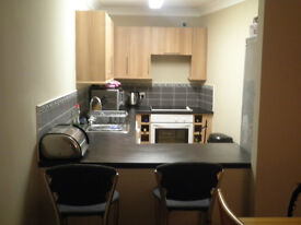 Gorgeous 2 bedroom flat - 5 mins from Merchant City **OPEN VIEWING THIS SAT**