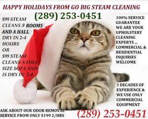 WE GET RID OF WEE CALL US FOR STEAM CARPET/FURNITURE CLEANING
