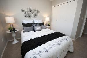 New Pet Friendly 3 Bedroom Townhomes w in-suite laundry Beaumont Edmonton Edmonton Area image 5