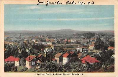 Subury Ontario Canada Birds Eye View Looking South Antique Postcard J43787