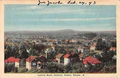 Subury Ontario Canada Birds Eye View Looking South Antique Postcard J43787