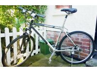 "Bike in Chiswick 28"""