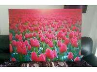 Large canvas flowers, wall art