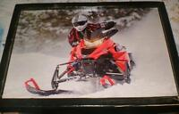 2014 Yamaha action picture - mounted, ready to display