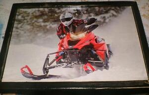 Yamaha snowmobile picture -2014- mounted, ready to display