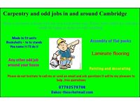 Handyman/carpenter odd jobs
