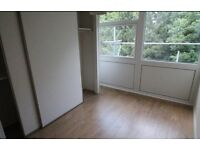 Stunning 3 bed flat in Eltham