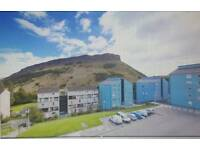 LOVELY 1 bedroom flat to rent Excellent location