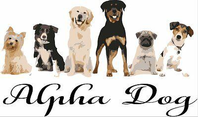 Alpha.Dog.supplier