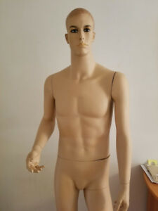 6 Foot Male Mannequin