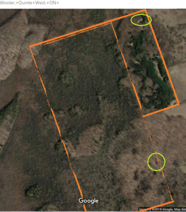 Cabbin or Land to Rent 121 Acres