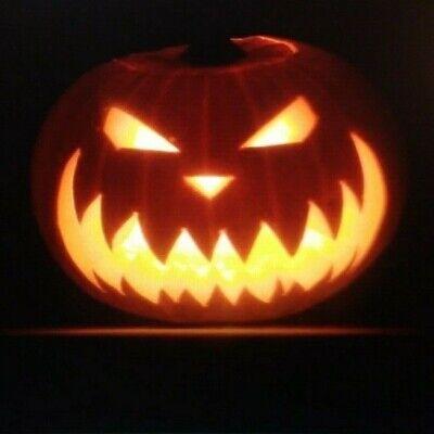 HALLOWEEN DVD/CONSPIRACY/OCCULT ORIGINS/SAMHAIN DRUIDS~Paganism~Satanic Holidays - Druid Halloween Origin