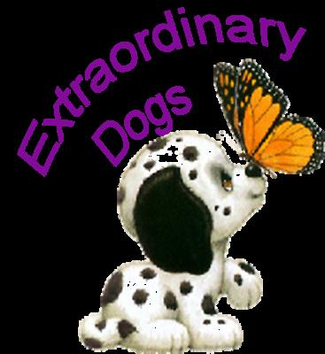 Extraordinary Dogs Inc.