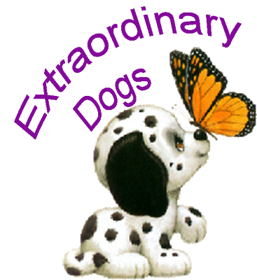 Extraordinary Dogs Inc