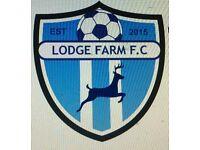 Lodge Farm Blues under 15