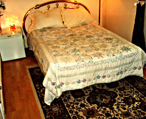 Need a nice room in Hamilton for only 1-2 months, ladies?