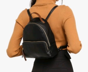 Sac a dos Fossil backpack