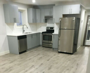 2br - BRAND NEW 1 OR 2 BDRM bsmnt Suite in White Rock
