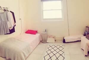Single Room in Eastlakes, Sydney Eastlakes Botany Bay Area Preview