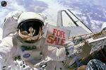 Space Coast to Coast Sales