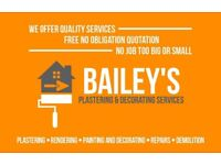 Plastering and Decorating Services (Bailey's Plastering & Decorating)