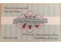 Lydia's cleaning services