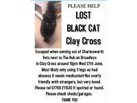Lost black cat - clay cross