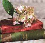 librairieTaiwan