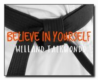 Welland Taekwondo New Year Special