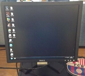 "17"" Dell E E176FPB LCD Monitor without stand"