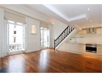 LARGE ONE BEDROOM FLAT WITH 2 PRIAVTE TERRACES PIMLICO