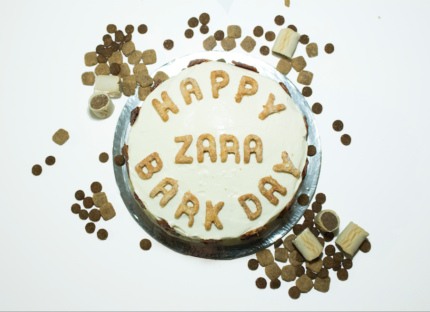 Dog Cakes - New Pet Bakery Opening Offer!