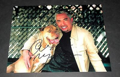 """CESAR MILLAN PP SIGNED 10""""X8"""" PHOTO DOG WHISPERER"""
