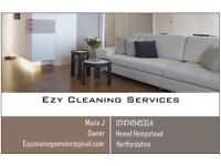 Ezy Cleaning Services- housekeeping, ironing and domestic cleaning