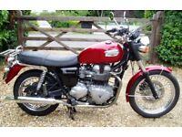 Triumph Bonneville UK Delivery Available BARGAIN!