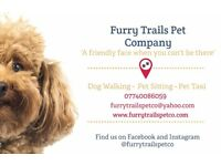 Dog Walker- Pet Sitter- Pet Transport in Rochdale- Fully Insured and CRB Checked- 10 Years Exp.