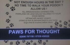 dog minding & walking services