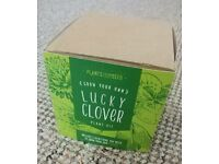 Plants from Seed - Grow your own lucky clover kit