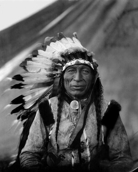1905 Native American Indian CHIEF IRON TAIL 8x10 Photo Lakota Sioux Print Poster