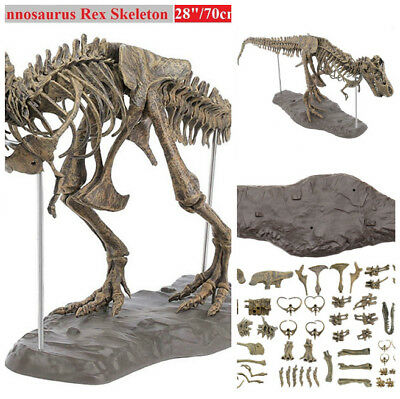 Tyrannosaurus Rex Skeleton Dinosaur T-Rex Animal Model super Toys Collector, used for sale  Shipping to Canada