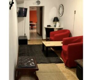 2- Bdroom Basement Furn.   DOWNTOWN from June 21-June 30