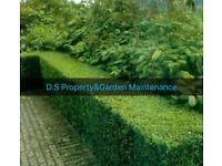 All Garden&Maintenance Done