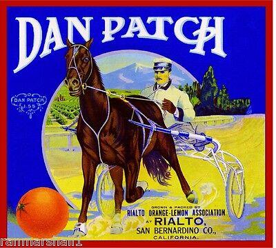 Rialto Dan Patch Horse Race Orange Citrus Fruit Crate Label Art Print